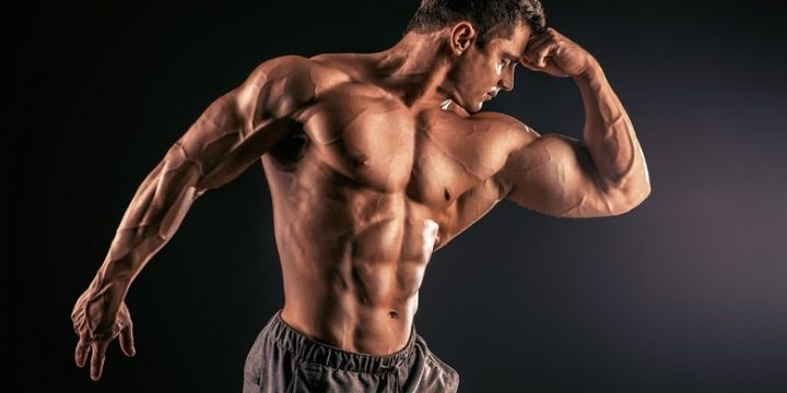 Top 4 Bodybuilding Supplements That Work Like Steroids